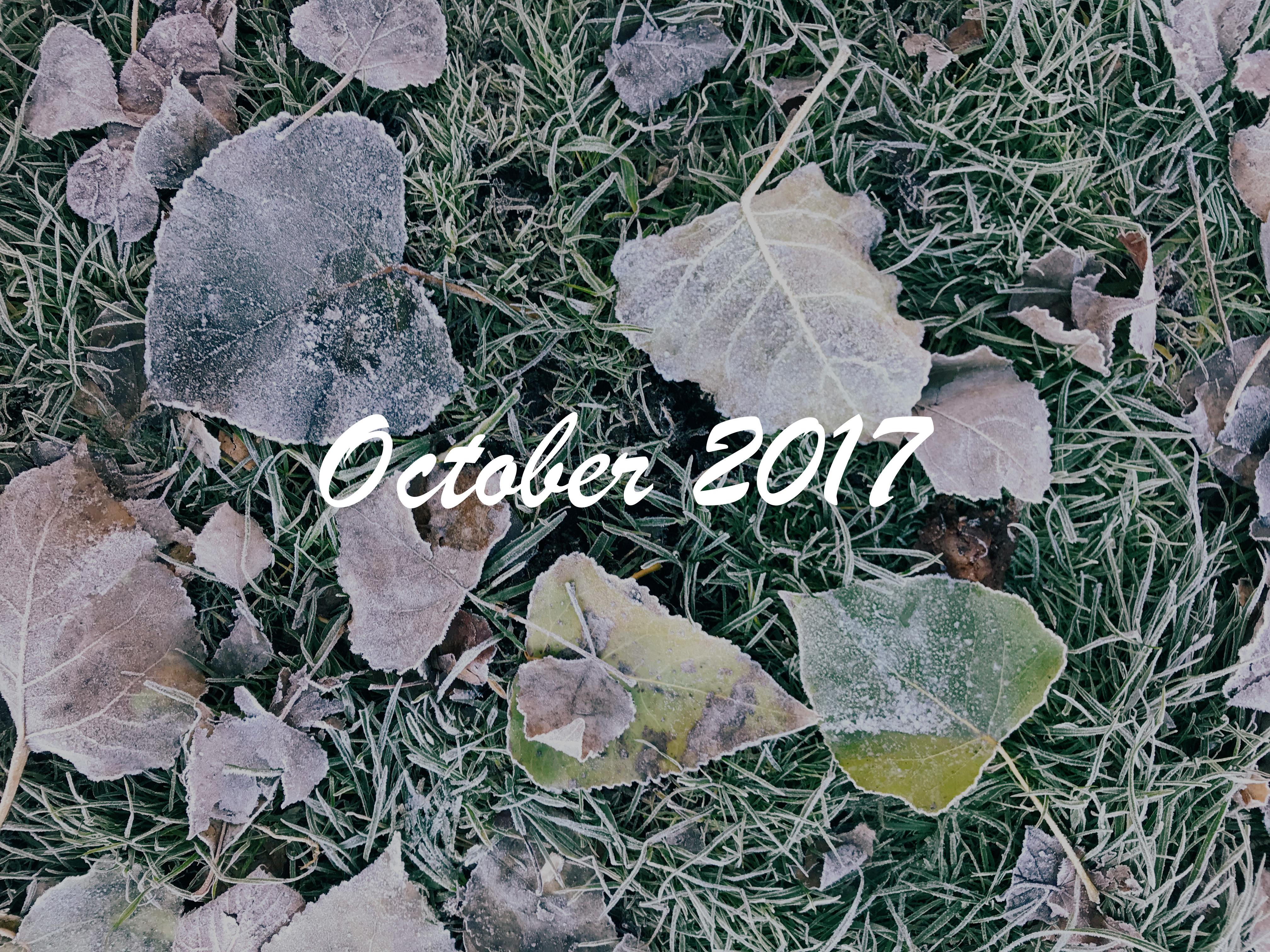 Маленькие блаженства 2017. Октябрь